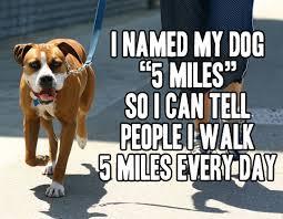 I WALK 5 MILES.jpg